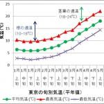 東京の旬別気温(平年値・1-5月)